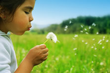 Girl blowing on dandilion
